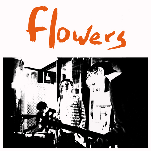 kr145-flowers-everybodysdyingtomeetyou
